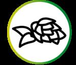 picto60